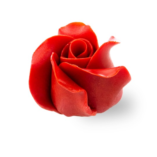 Chocolate rose red